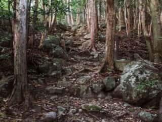 瀧尻王子宮 熊野古道