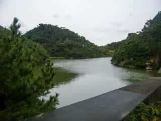 伊島の自然