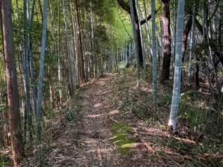 益田岩船への山道