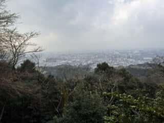 伏見稲荷大社 千本鳥居からの景色