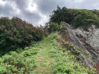 願掛岩から山道を降る