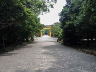 宇佐神宮 参道と大鳥居