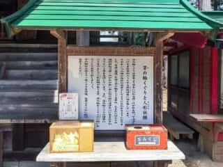 白山神社 茅の輪くぐりと人形祈願