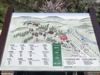 中尊寺 地図