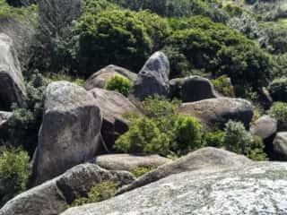 唐人石巨石群
