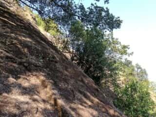 神倉神社下 急斜面の岩場