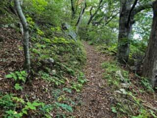 願掛岩の上にある公園への道