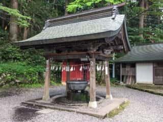 戸隠神社中社 手水舎